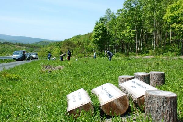 2012年6月草刈りの様子
