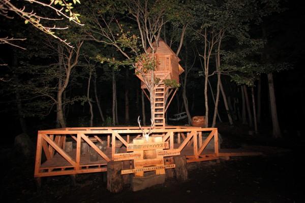 10夜のツリーハウス