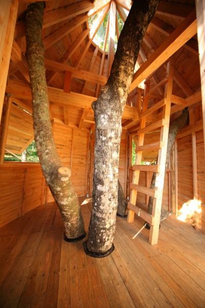 ツリーハウスの内部